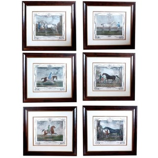 18th Century Traditional Aquatint Engravings of Famous Racehorses - Set of 6 For Sale