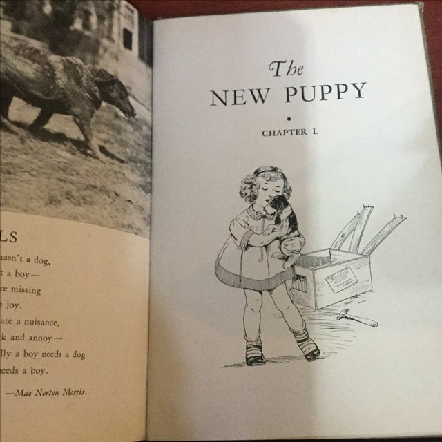 1937 Book, Your Dog His Care & Training For Sale - Image 7 of 9