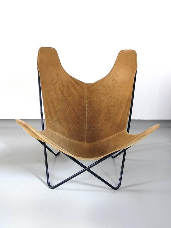 Butterfly Chair By Jorge Ferrari Hardoy For Knoll   Image 2 Of 9
