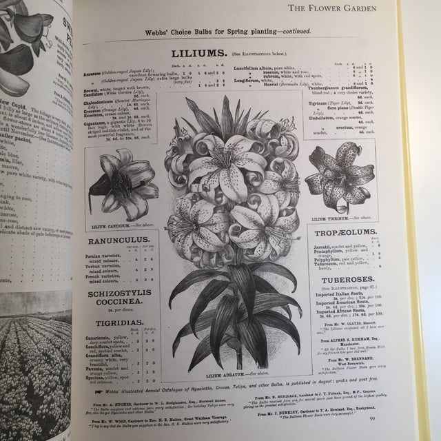 """1995 """"The Victorian Garden Catalogue"""" Book For Sale - Image 5 of 11"""