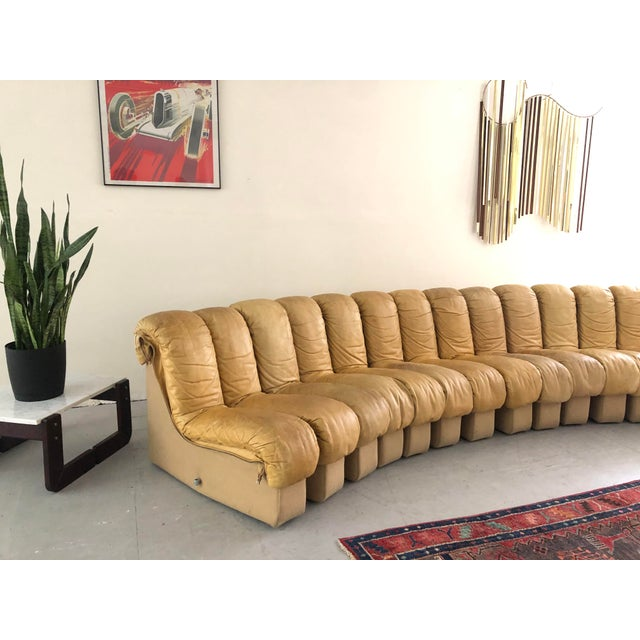 "Modern Monumental De Sede Ds600 ""Non-Stop"" Snake Sofa For Sale - Image 3 of 9"