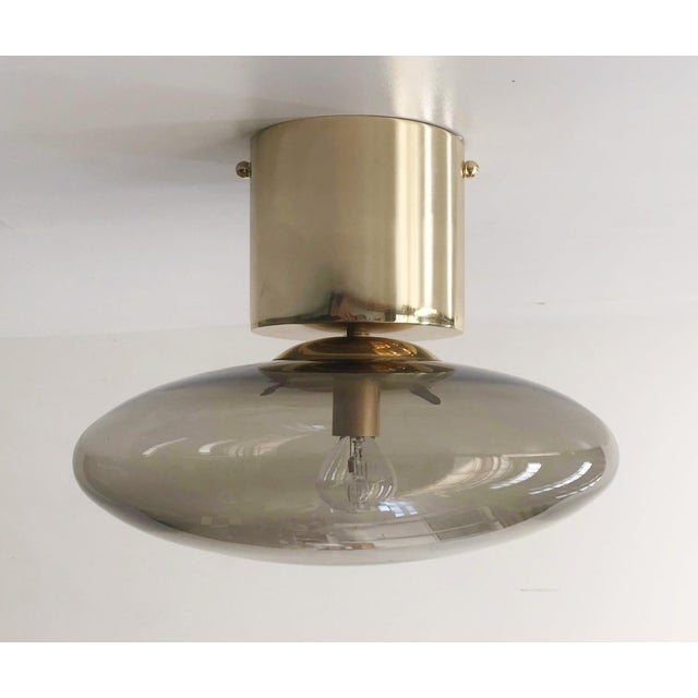 Italian modern flush mount with smoky Murano glass shade with chic polished brass finish / Designed by Fabio Bergomi for...