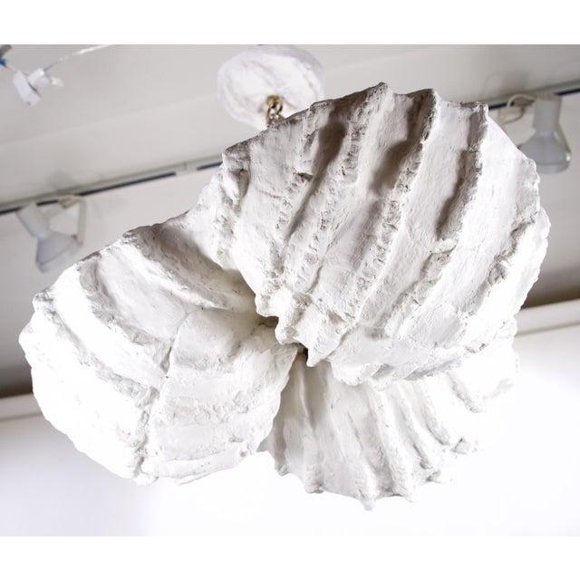 Mid-Century Modern Sea Shell Plaster Pendant/Chandelier For Sale - Image 4 of 7
