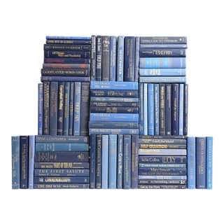 Retro Blue Book Wall - Set of 75 For Sale