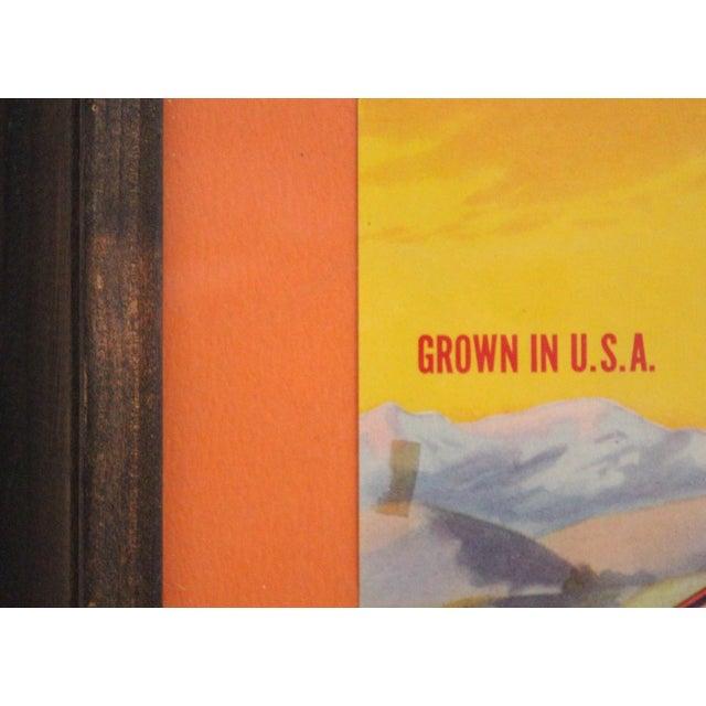 """Americana Vintage Framed """"Sunkist"""" Ad For Sale - Image 3 of 4"""