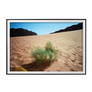 "Eden Batki ""Mirage"" Unframed Photographic Print For Sale"