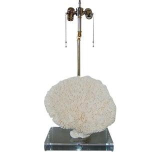 Coral Table Lamp White For Sale