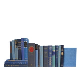 Retro Denim and Gilt MIX Book Set, S/20 For Sale