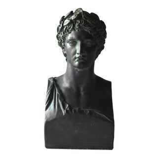 Vintage Bronzed Plaster Greek Apollo Bust For Sale