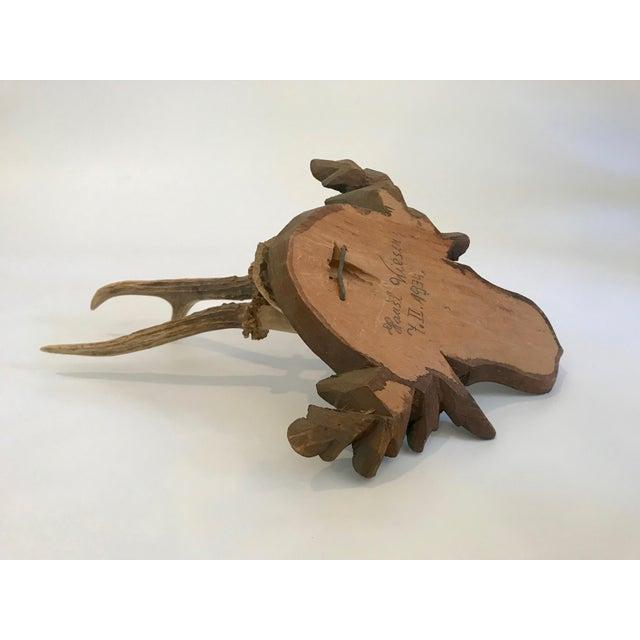 Black Forest Black Forest Antler Trophies Mounted on a Shield Back With Leaf Decoration For Sale - Image 3 of 13