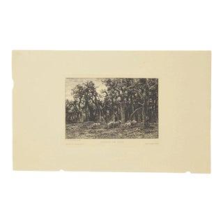 """Lisiere De Bois"" Original Etching by Charles Emile Jacque For Sale"