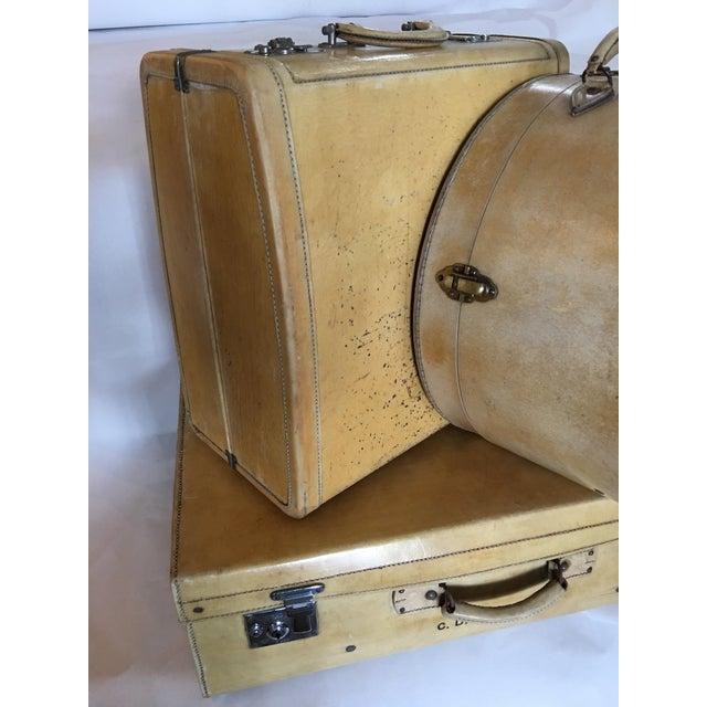 Vintage English Vellum Suitcases & Hat Box - Set of 3 - Image 3 of 11