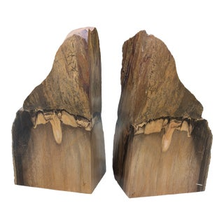 Prehistoric Polished and Natural Petrified Wood Bookends - a Pair For Sale