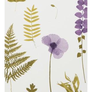 Herbarium Wallpaper by Clarke & Clarke - Sample For Sale