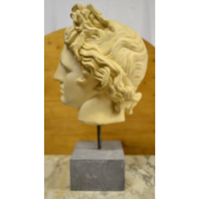 White NeoClassical Plaster Bust Sculpture - Greek God's Head on Stone Base For Sale - Image 8 of 10