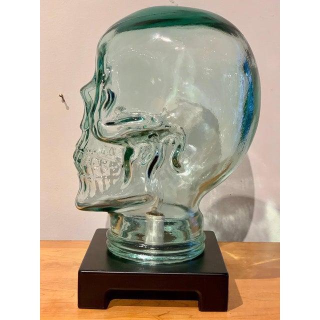 Modern Glass Skull Lamp For Sale In Atlanta - Image 6 of 12