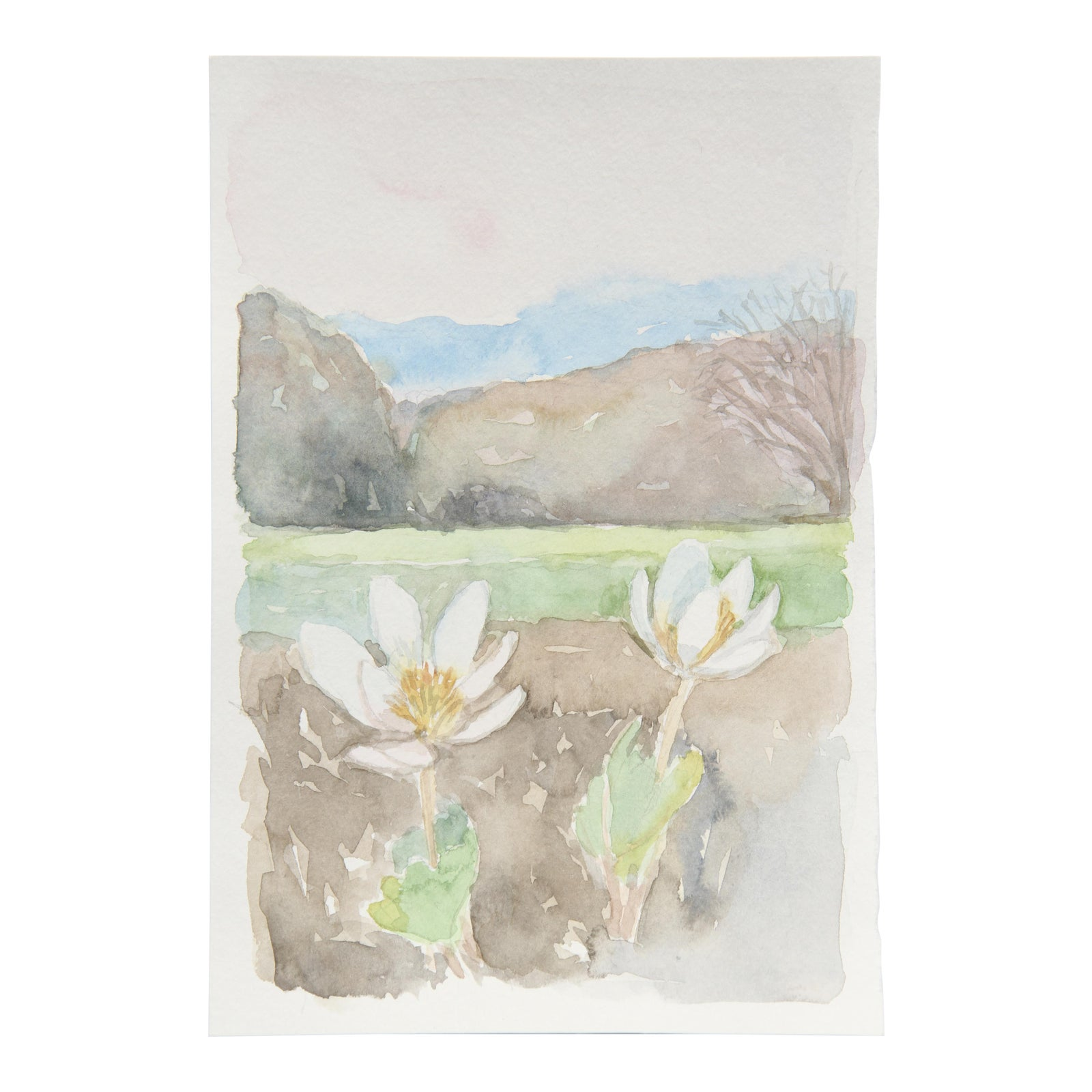 Watercolor Painting Of Landscape With Hills And White Flowers Chairish