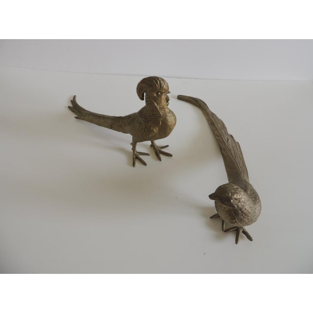 1980s Pair of Brass-Plated Standing Male and Female Pheasants For Sale - Image 5 of 6