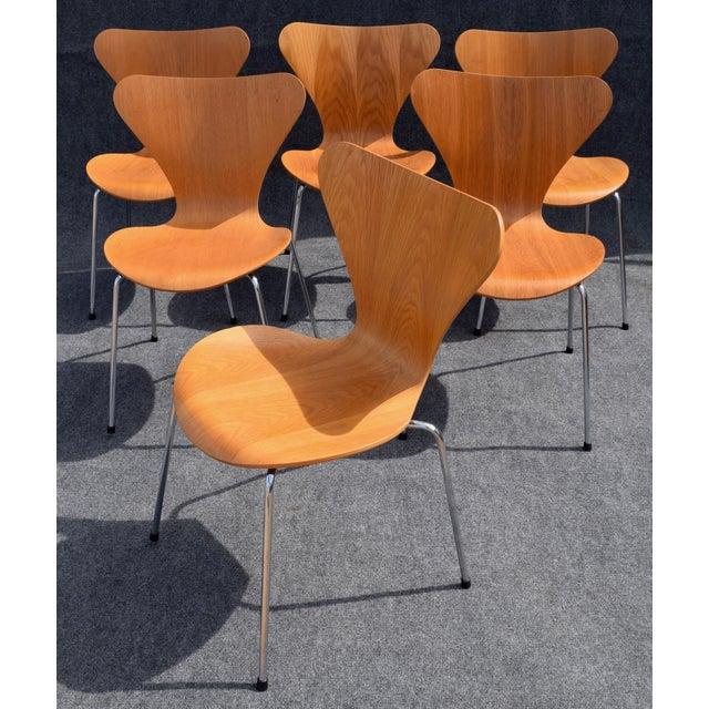 Danish Modern Vintage Arne Jacobsen by Fritz Hansen Danish Modern Series 7 Chairs - Set of 6. For Sale - Image 3 of 11