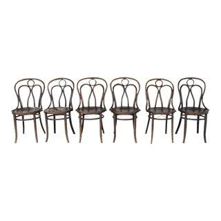 Mundus and J J Kohn Ltd Bentwood Chairs - Set of 6 For Sale