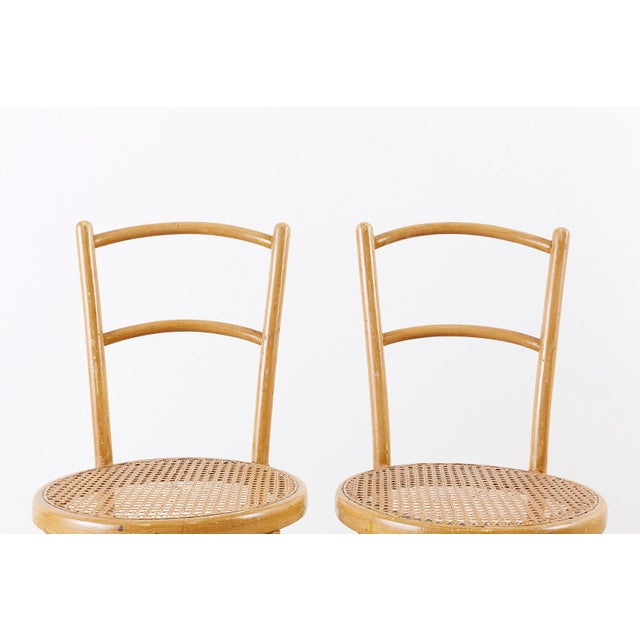 Pair of J. And J. Kohn Austrian Bentwood and Cane Chairs For Sale In San Francisco - Image 6 of 13