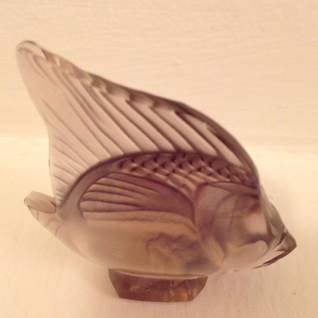 Lalique Angel Fish Mauve For Sale - Image 4 of 8