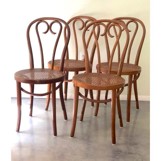 Vintage Thonet Sweetheart Bentwood Cane Bistro Cafe Chairs--Set of 4 For Sale In Tampa - Image 6 of 9