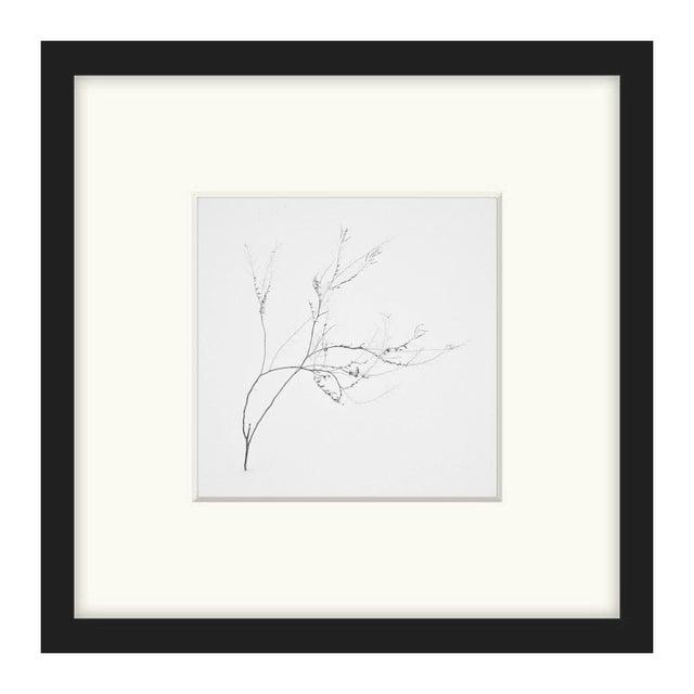 "Bryce Olsen ""Snow Shapes Study 4"" Framed Print - Image 1 of 2"