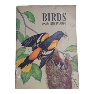 1957 Birds in the Big Woods Book by Glenn O. Blough For Sale