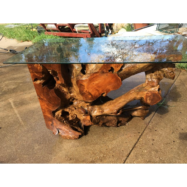 Beautiful Cypress Root Burl has taken a thousand years to get ready for you. Lay it flat as a coffee table or stand...