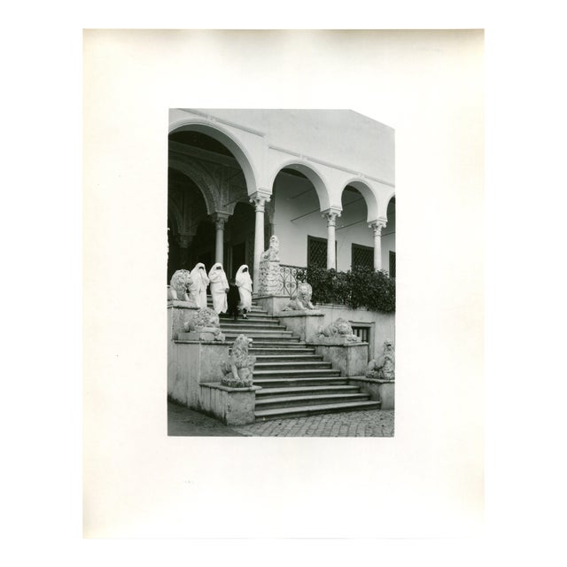 Vintage 1950's Photograph Bardo Palace, Women at the Lion Entrance Tunis Tunisia - Image 1 of 3