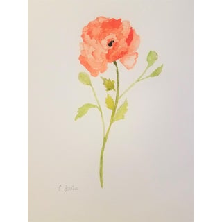 Christine Frisbee Poppy Original Watercolor Painting For Sale