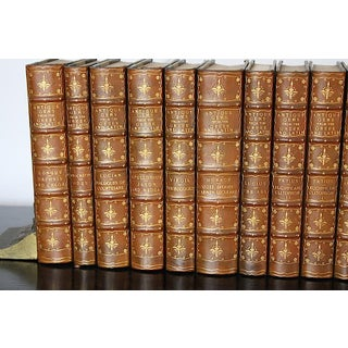 Antique Latin & Greek Classics Leather Books - Set of 12 Preview