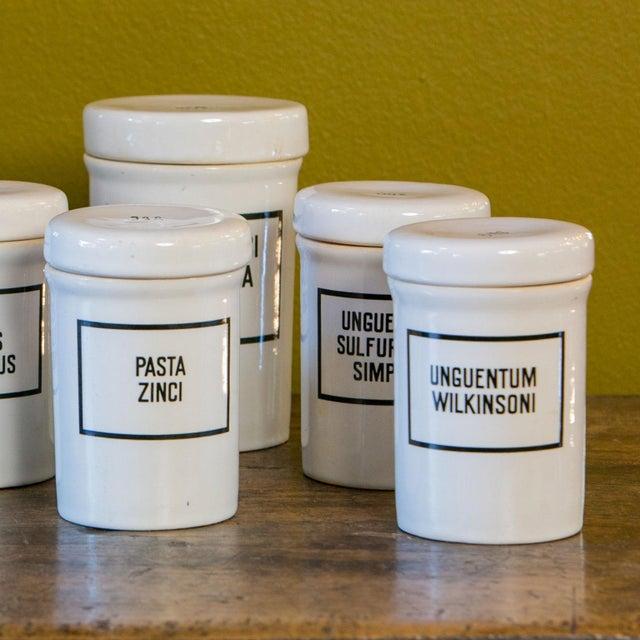 Set of Seven Ironstone Pharmacy Jars For Sale In Houston - Image 6 of 7