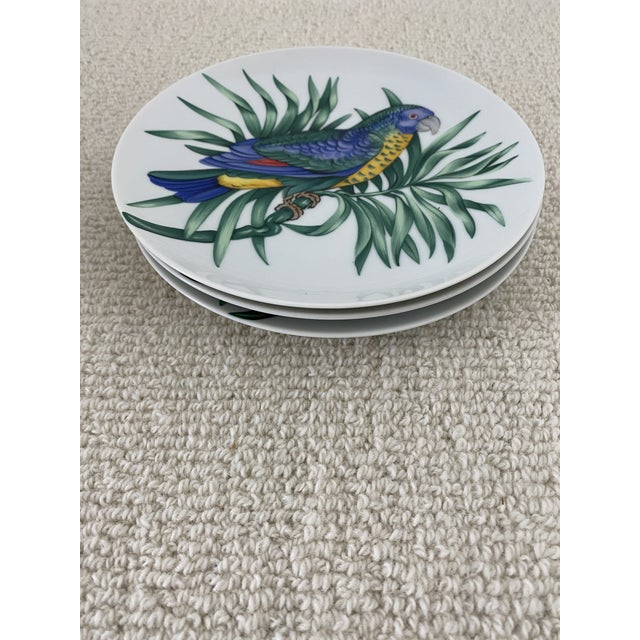 Set of 6 Fitz and Floyd Perroquet Porcelain Parrot Plates - 3 Red Parrot plates and 3 Blue Parrot plates. The plates are...