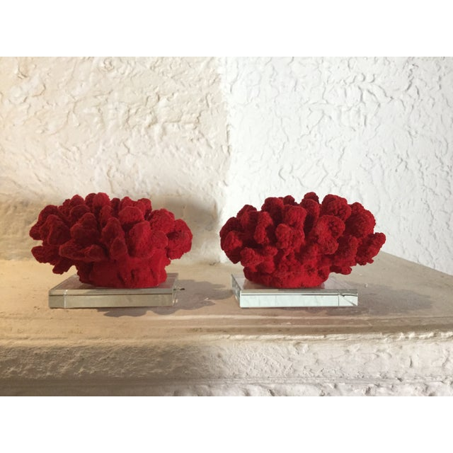 Faux Red Coral Bookends - A Pair - Image 2 of 5
