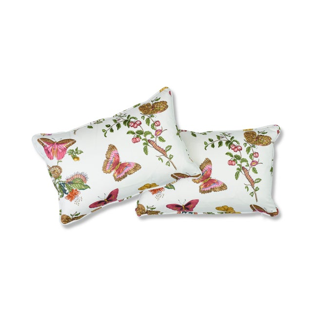 "This 12"" x 18"" pillow features Baudin Butterfly in Blush. Inspired by the illustrations of the 17th century German..."