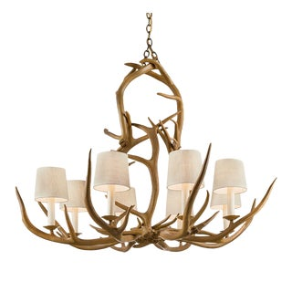 Natural antler light