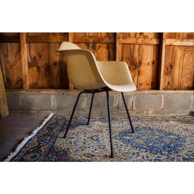 1950s Eames Venice Label Parchment Chair - Image 6 of 7