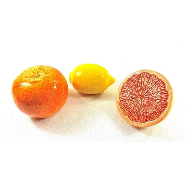 Grapefruit, Orange & Lemon Ceramic Fruit - Set of 3 - Image 6 of 12