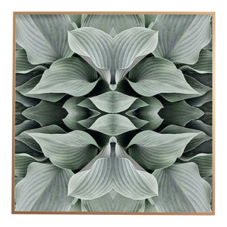 """""""No. 89"""" Contemporary Botanical Photograph by Erin Derby, Framed For Sale"""