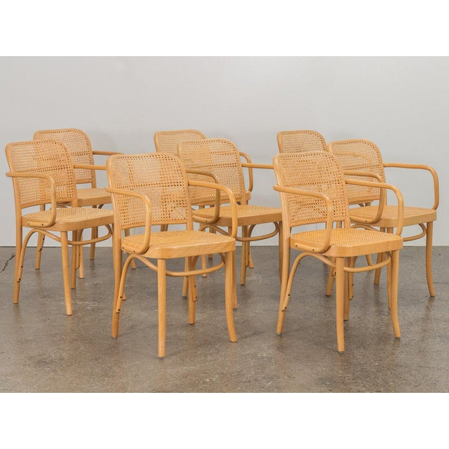 Modern Joseph Hoffman Bentwood Chairs - Set of 8 For Sale - Image 3 of 11