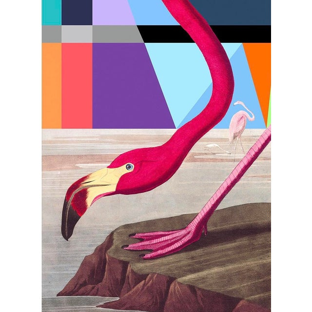 Title: Modern Flamingo Limited Edition Fine Art Print Hand Signed and Numbered by Artist Tony Curry. This Beautiful...