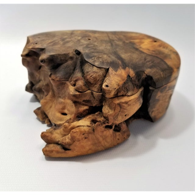 Boho Chic Vintage Burl Wood Trinket Jewelry Box by Doug Muscanell - Signed - Organic Mid Century Modern Palm Beach Boho Chic Tree For Sale - Image 3 of 13