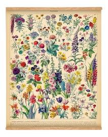 Image of Farmhouse Reproduction Prints