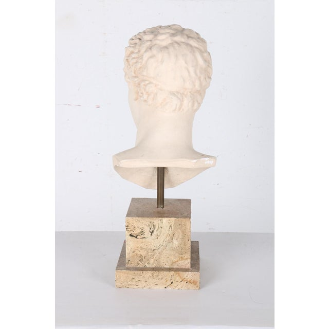 Vintage Plaster Bust After Apollo - Image 4 of 7