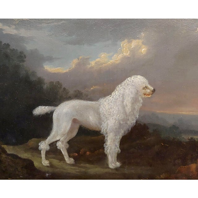 English 18th Century Portrait of White Poodle in a Landscape Oil Painting For Sale - Image 3 of 10