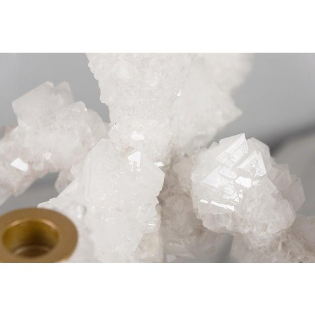 Mark Sturkenboom Crystals Overgrown Candelabra, Mark Sturkenboom For Sale - Image 4 of 6