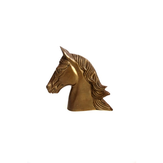 Gold Large Vintage Brass Horse Bust | Stallion Head Statue | Equestrian Décor | Western Chic Horse Sculpture | Equine Home Accent For Sale - Image 8 of 13