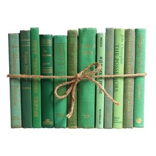Midcentury Palm ColorPak : Set of Decorative Books